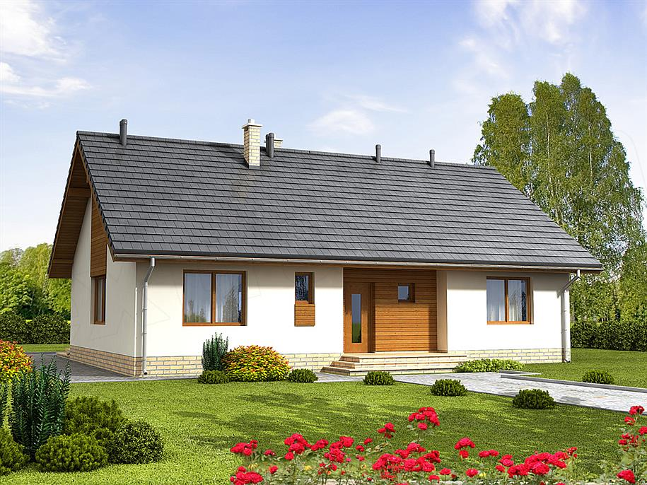 mẫu nhà 1 tầng đơn giản đẹp 12