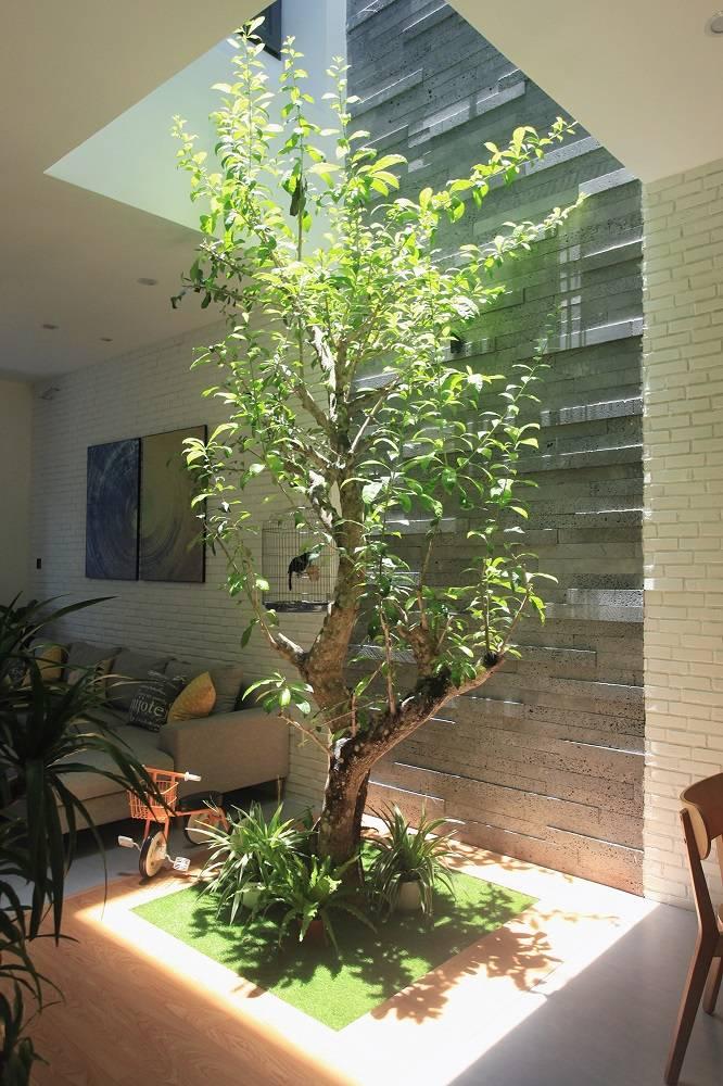mẫu thiết kế nhà 2 tầng mặt tiền 6m 8