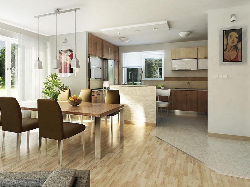 thiết kế nội thất mẫu nhà 1 tầng đơn giản 2